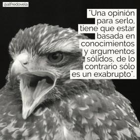 alfredovela-opinion