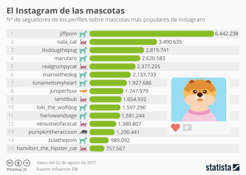 Cuentas de mascotas con más seguidores en Instagram