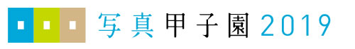 p甲子園2019タイトル