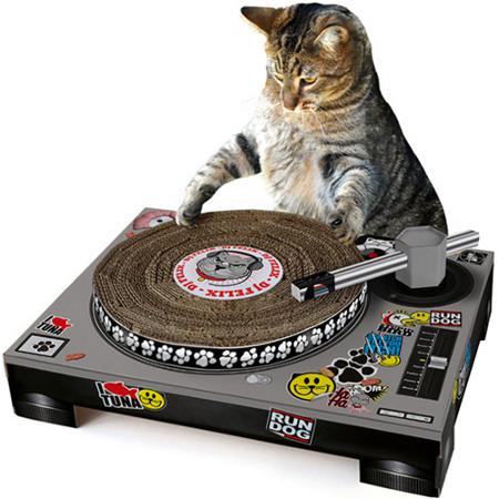tornamesa DJ para gatos