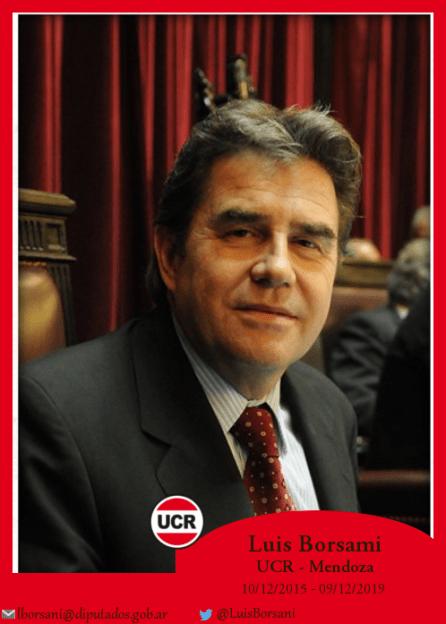 Luis Borsani