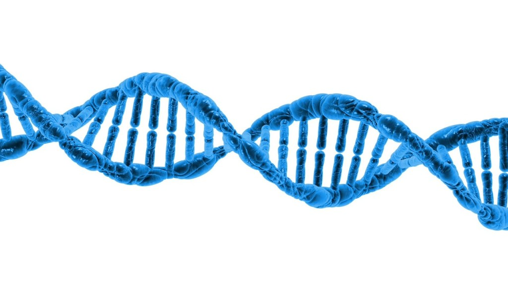 picture of DNA helix