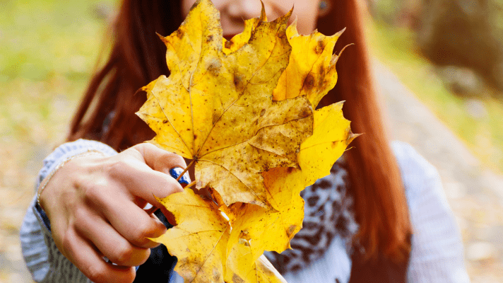 Everything I Love About Fall