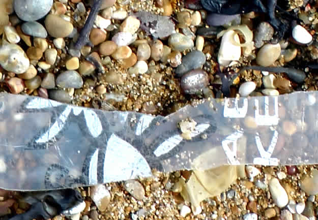 Strip of broken plastic crab bucket