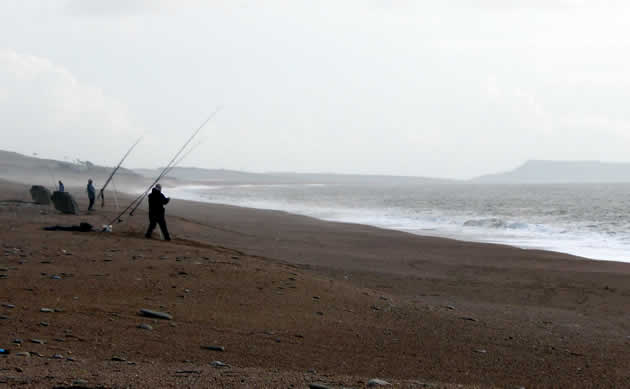Anglers fishing for cod off Cogden Beach
