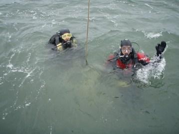 Anne and Sam take a dip in Boston Harbor