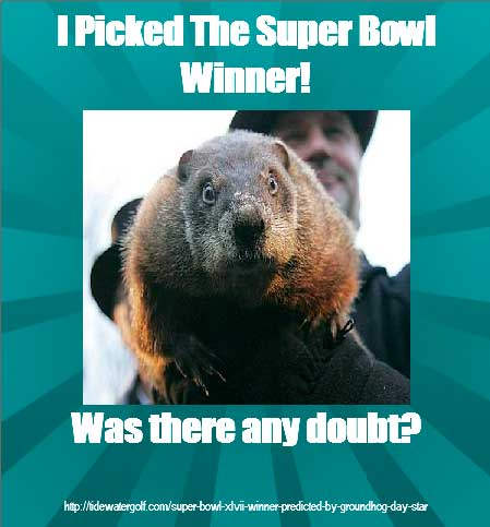 superbowlgopher