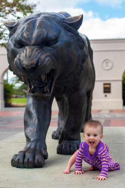 GOOOO TIGERS! Roar!!