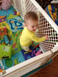 She pulled herself to standing position in her play yard for the first time!