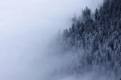 Nebelstimmung am Stockhorn