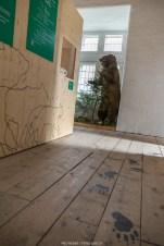 Bären-Ausstellung im Torre Belvedere