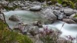 Fluss Albigna