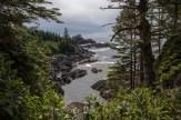 Wilde Pazifikküste