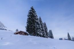 Winterstimmung am frühen Morgen