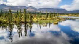 Einer der vielen Seen am Denali Hwy