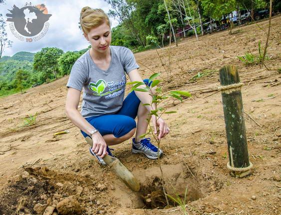 Kui Buri National Park Tree Planting