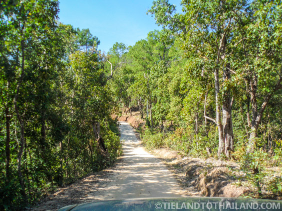Expertly navigating the dirt roads to the Elephant Jungle Sanctuary