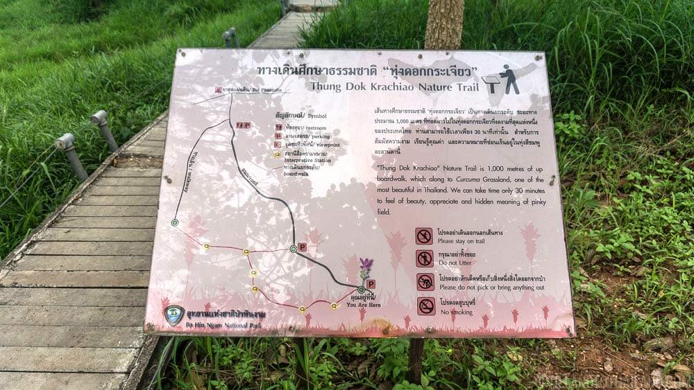 Thung Dok Krachiao Nature Trail in Pa Hin Ngam National Park