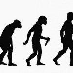 HALLAZGOS DE FÓSILES EN CHINA ESTÁN DESAFIANDO LAS IDEAS SOBRE LA EVOLUCIÓN HUMANA