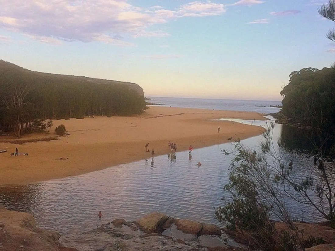 Vista de Wattamolla Beach, Royal National Park, NSW