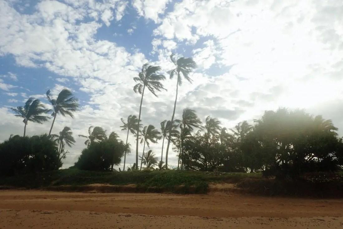 Ruta Brisbane Cairns Australia