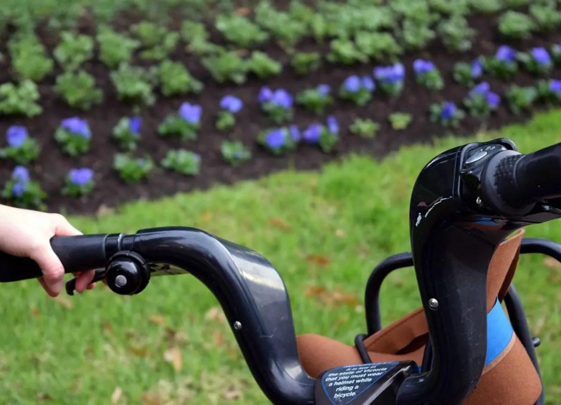 Parques y jardin botánico,, Que ver en Melbourne, Victoria, Australia