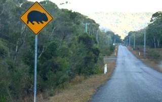 Wombat Road Sign, Kangaroo Valley, NSW, Viajar a Australia