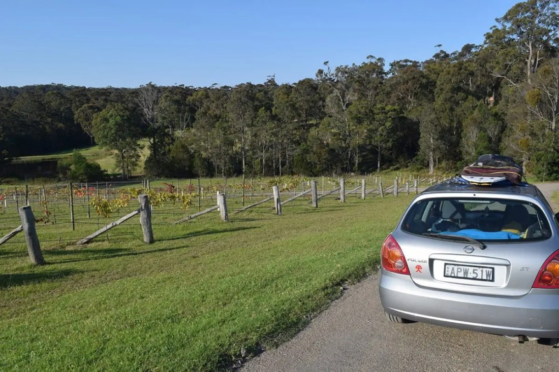 Mimosa Wines, Ruta de Sydney a Melbourne, NSW Australia