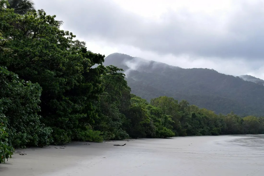 Cape Tribulation Australia Playas