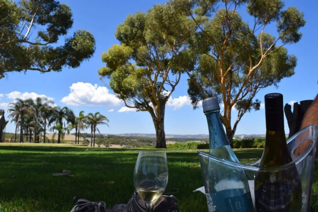 vino bebida tipica de australia