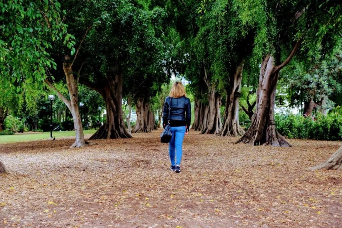 Jardín Botánico de Brisbane