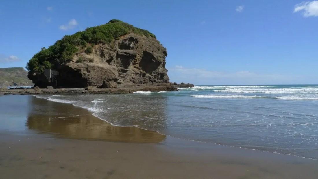 Muriwai que ver isla norte de Nueva Zelanda