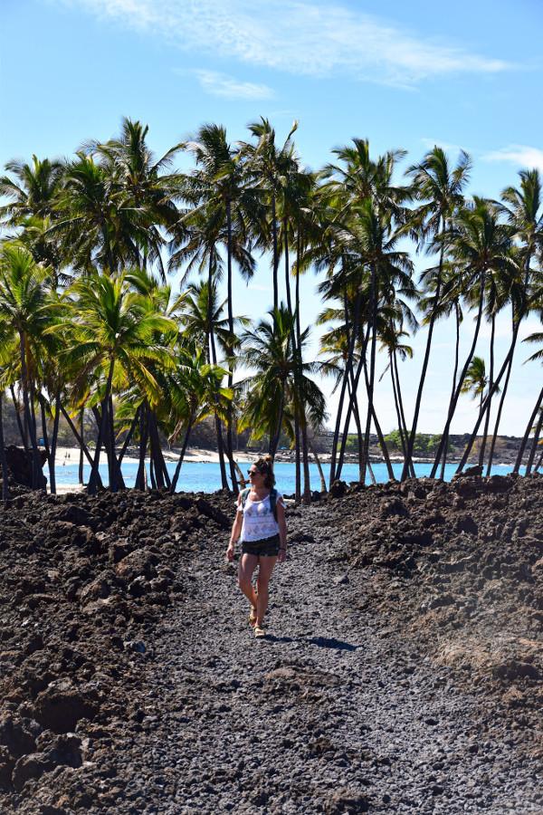 costa oeste big island hawaii