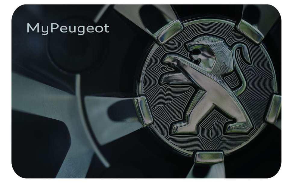 my_peugeot_5.jpg