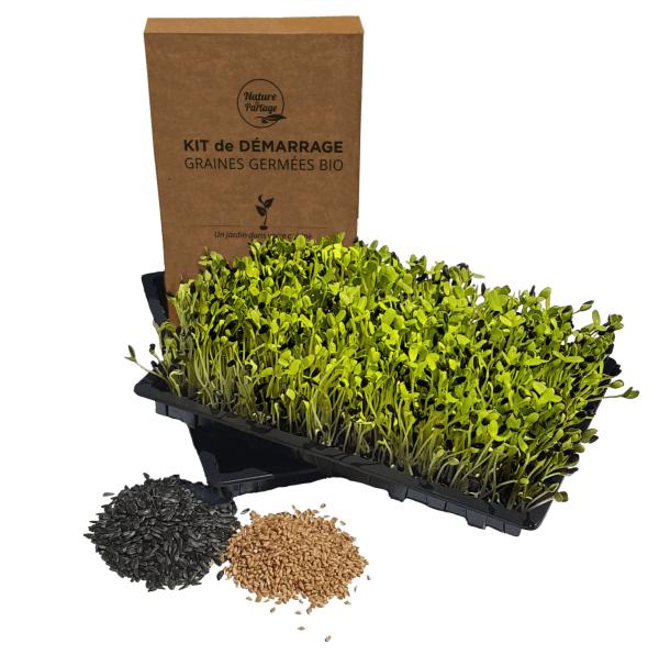 Kit de inicio para semillas germinadas