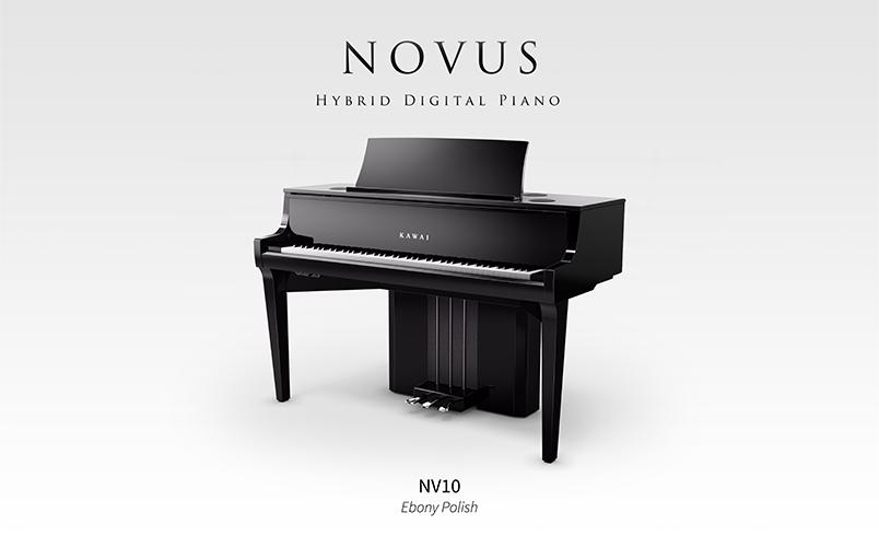 NOVUSNV10