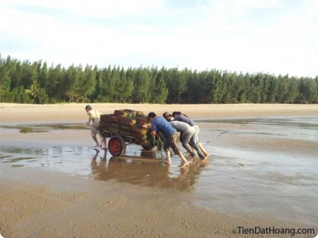 Kéo các bọc cát lên để làm gì nhỉ?