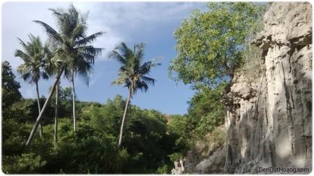 Suối Tiên! Có giống với những cánh rừng mà Tarzan ở không nhỉ?