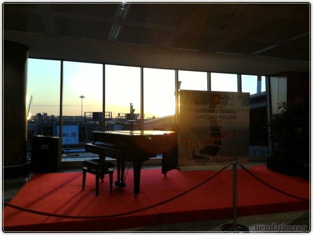 Lãng đãng phết, piano giữa sân bay.