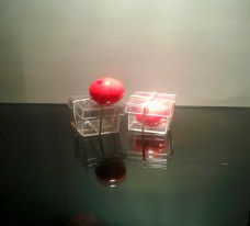 bolita roja a través de la caja truco de magia