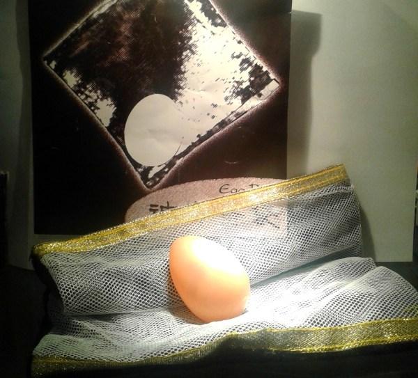 huevo en la bolsa
