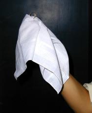 pañuelo blanco para desaparición de anillo