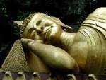 buddha-85673_640