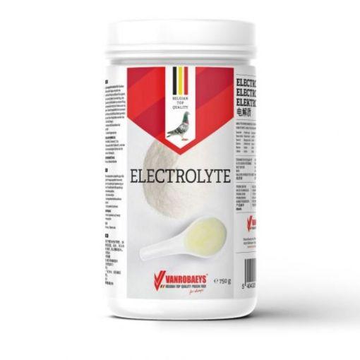 Vanrobaeys Electrolyte 750g