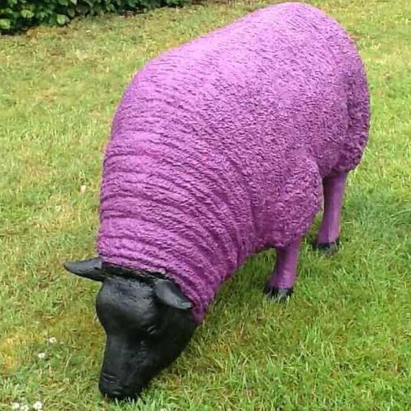 Dickes Schaf fressend pink