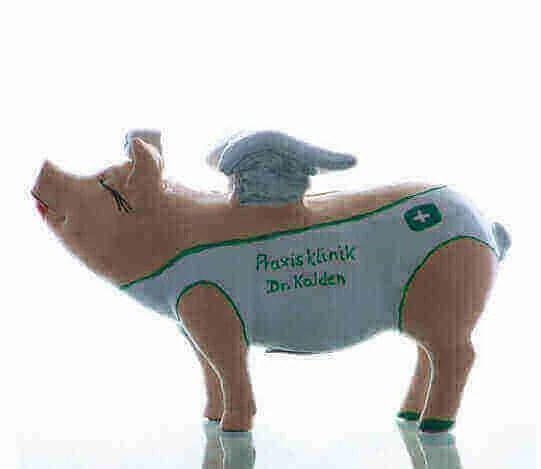 Individuelle Sparschweine
