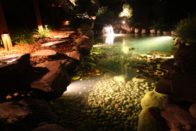 Tier One Landscape  Portfolio of services  Water