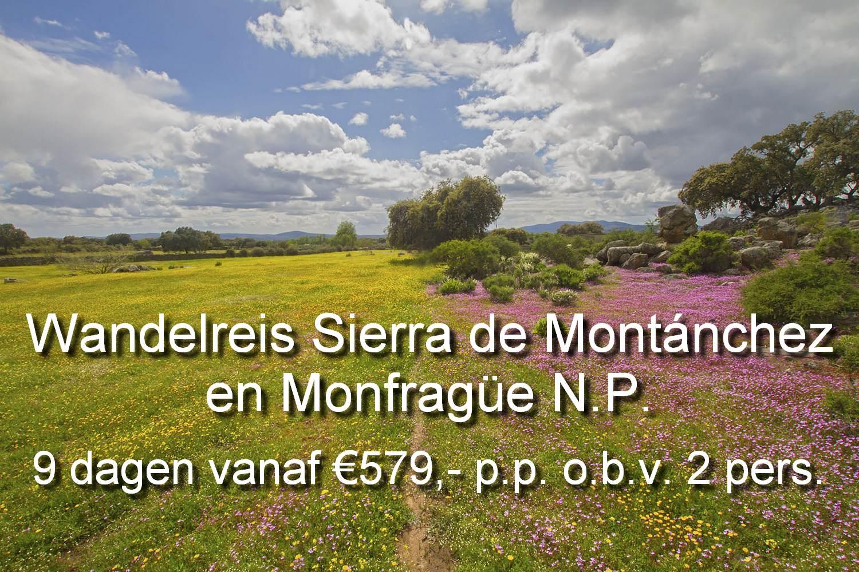 Wandelen in Sirerra de Montánchez en Monfragüe N.P. is een beleving