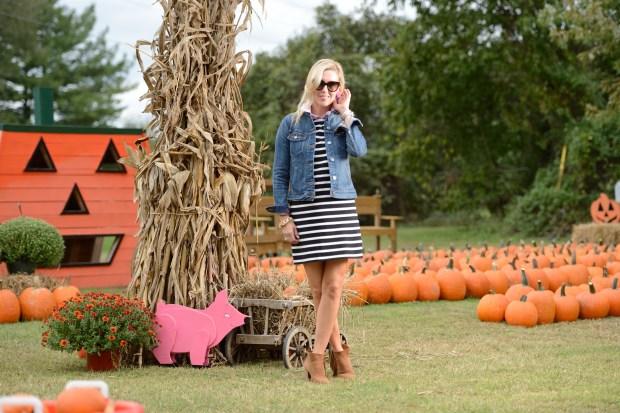 Striped Dress and Denim Jacket