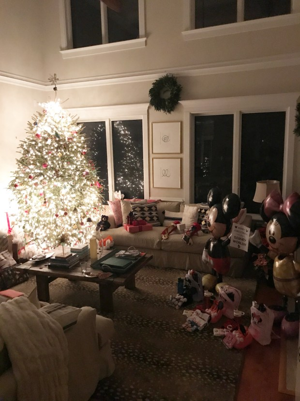 Santa brought Disney this year!! We leave in January so the anticipation has been part of the fun!! It was a great day, fairly low key which made it so enjoyable!!